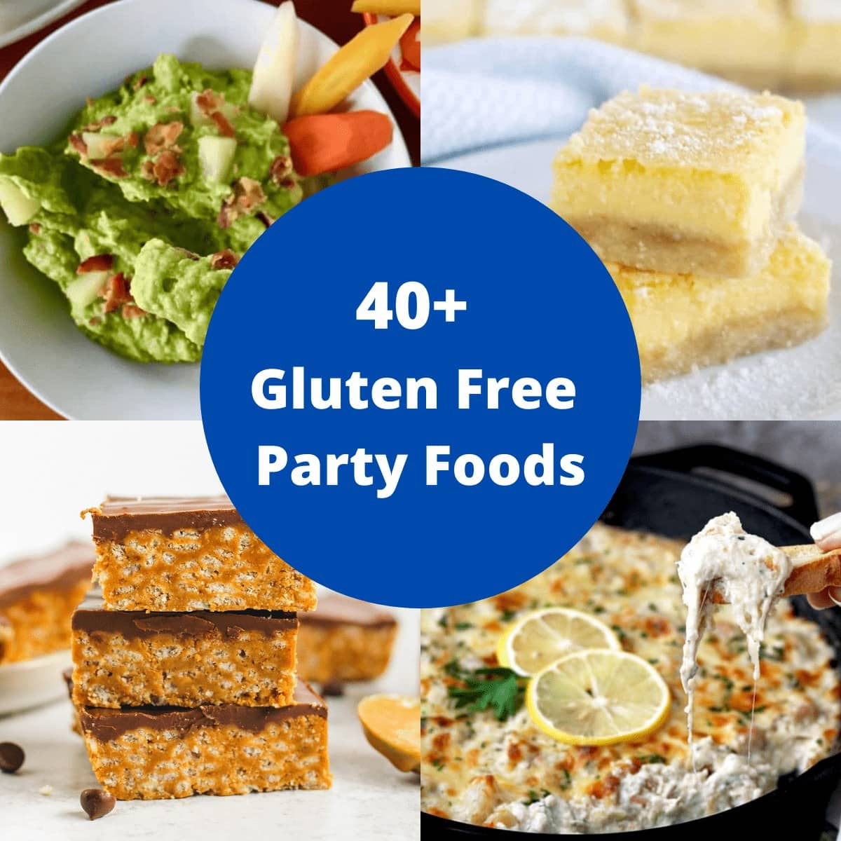 Gluten free party recipes cover